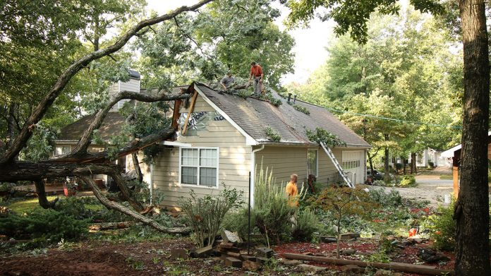 storm damage services